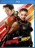 Ant-Man y la Avispa | Descargar Torrent | DivxTotaL