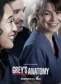【Serie de TV】Anatomía de Grey/Grey's Anatomy HD ...